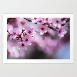 New pink spring. Pink dreams Art Print