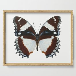 Madagascan Diadem Butterfly Serving Tray
