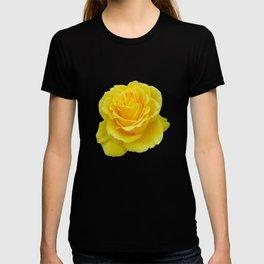 Beautiful Yellow Rose Closeup Isolated on White T-shirt