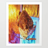 finding nemo Art Prints featuring Not finding Nemo by Gageography - Photography by Gage Hanson
