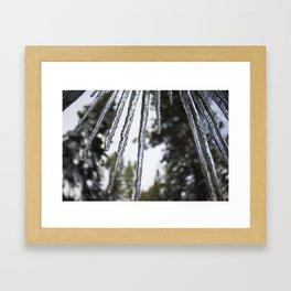 Ice Ice Baby in Lake Tahoe Framed Art Print