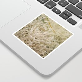 Florida: Blooming Palm Tree Sticker