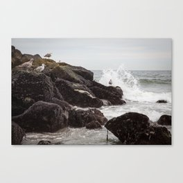 Seagulls and Breaking Waves on Rockaway Beach Canvas Print