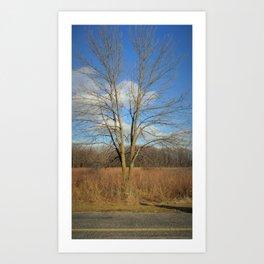 Lover's Tree Art Print