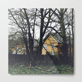 Houses in the forest Metal Print