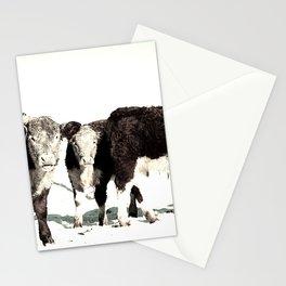 B&W Calves Stationery Cards