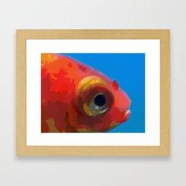 Bug Eye Fish Framed Art Print