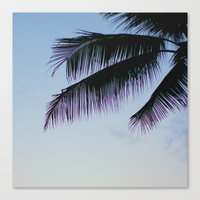palms Canvas Prints featuring Palms by Lovely Indeed