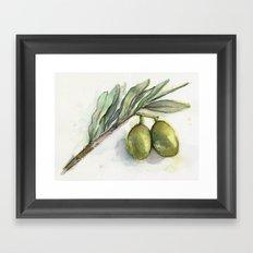 Olive Branch   Green Olives   Watercolor Illustration Framed Art Print