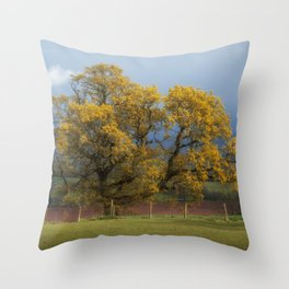 Sunlight before the Storm Throw Pillow