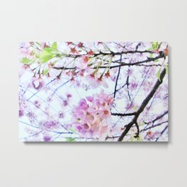 Under the Cherry Blossom Tree-picture 1 Metal Print