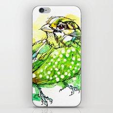 Australian Green Catbird  iPhone & iPod Skin