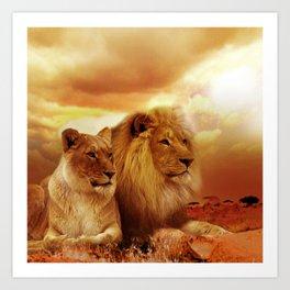 African lions Art Print