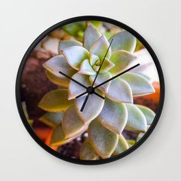 Oh My Succulent Wall Clock
