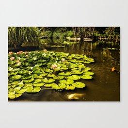 Water Lily Pond at Huntington Gardens No. 2 Canvas Print