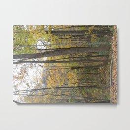 Timbers Metal Print