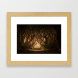 Sunny morning at Dark Hedges Framed Art Print