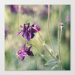 purple summer Canvas Print