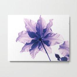Flower in Pantone Metal Print