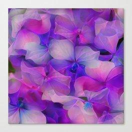Flower Fantasy - Hydrangea 2 Canvas Print