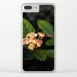 Sweet flowers Clear iPhone Case