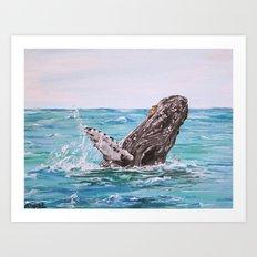 Baleen Queen Art Print