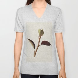 Pear (Pyrus Communis) (1923) by James Marion Shull Unisex V-Neck