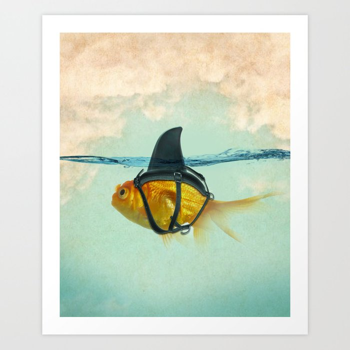 Brilliant DISGUISE - Goldfish with a Shark Fin Art Print