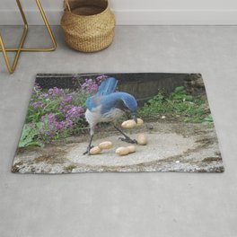 Jay Weighs the Options Rug