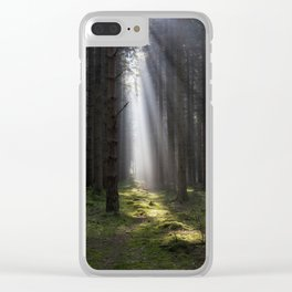 Along the Sunlit Path Clear iPhone Case