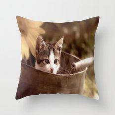 Kitten in tub Throw Pillow