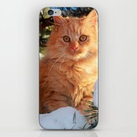 garfield iPhone & iPod Skins featuring Winter Garfield  by Lucie