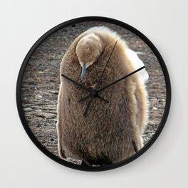King Penguin Chick Wall Clock