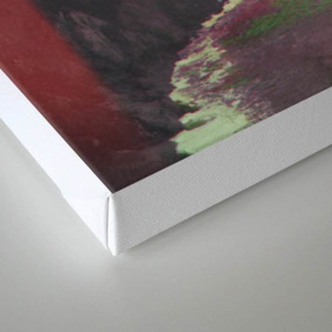 BIXB Canvas Print