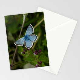 Chalkhill Blue Butterfly Stationery Cards
