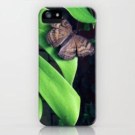 Damaged iPhone Case