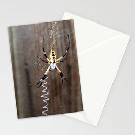 Itsy Bitsy Garden Spider Stationery Cards