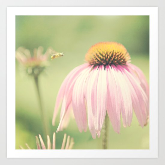 Little Honey Bee Art Print