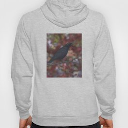 crow on a branch bokeh Hoody