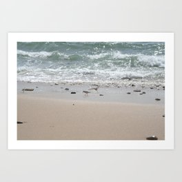 Seashore Sandpipers in tideland Art Print