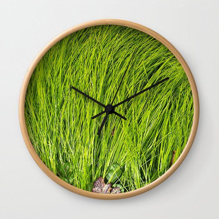 Verdure Wall Clock