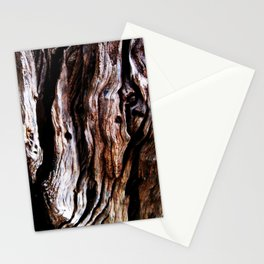 Ancient olive tree wood close-up Stationery Cards