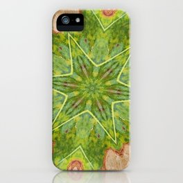 Leaf Hexagram Star Abstract iPhone Case