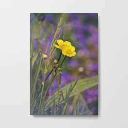 Buttercup Blues Metal Print