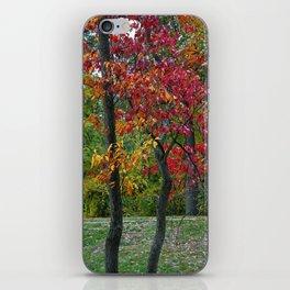 Brazen Love (fall foliage) iPhone Skin