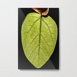 Nature's Beauty Up Close Metal Print