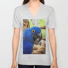 Hyacinth Macaw Unisex V-Neck