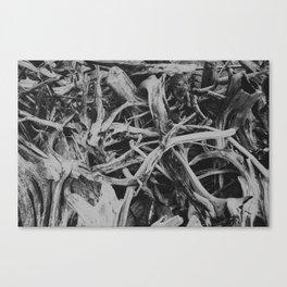 Black Death 1349 Canvas Print