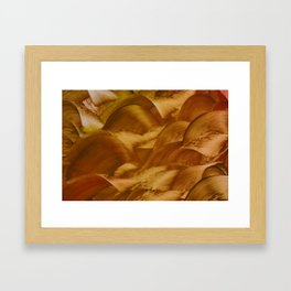 Phanes Framed Art Print