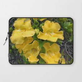 Cat's Claws Vines Laptop Sleeve